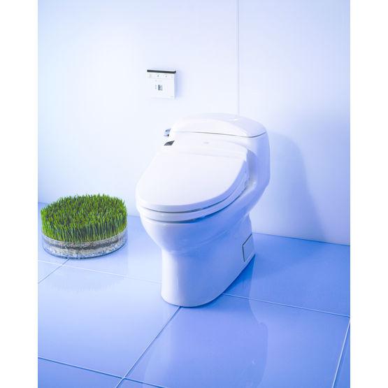 abattant chauffant lavant et s chant washlet washlet. Black Bedroom Furniture Sets. Home Design Ideas