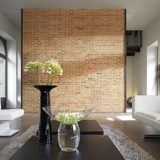 Briquette De Parement Interieur briques de parement aspect vieilli | brique
