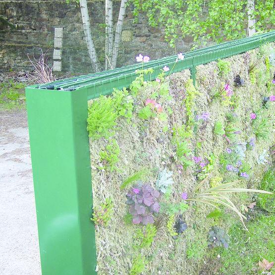 Clôture végétalisée avec substrat de culture | Bipalis Jardin ...