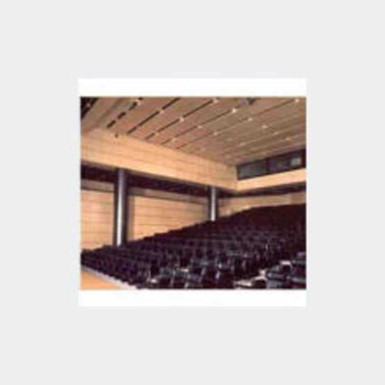 dalles ou panneaux acoustiques plaqu s bois pour faux plafond plafonds acoustiques marotte. Black Bedroom Furniture Sets. Home Design Ideas