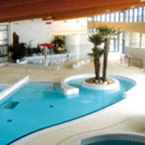 Etanch it liquide sous carrelage pour locaux humides for Etancheite piscine carrelage