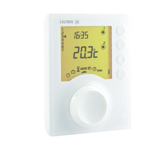 Gestionnaire d 39 nergie pour la domotique et les radiateurs for Delta dore calybox 220