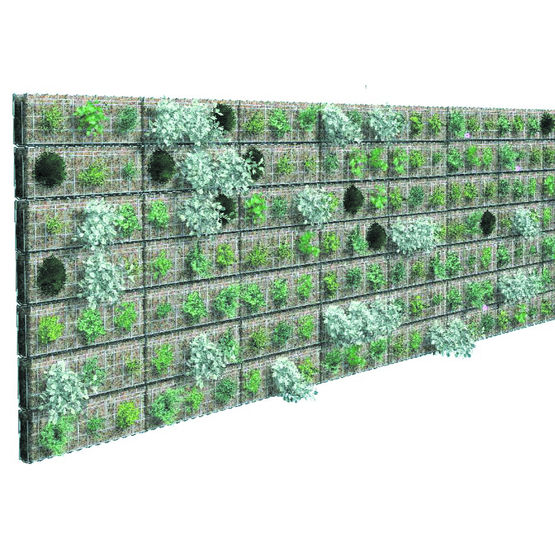 mur v g talis pour doublage de fa ade v g talis greenwall. Black Bedroom Furniture Sets. Home Design Ideas