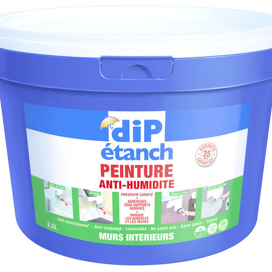 Peinture antihumidit d corative anti humidit dip etanch dyrup for Peinture anti humidite