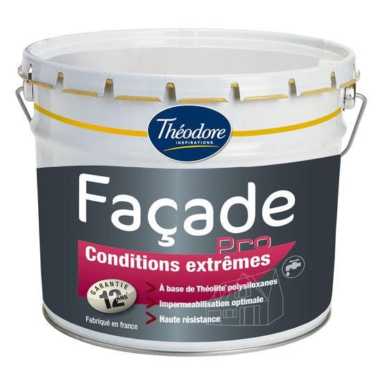 peinture theodore facade resine de protection pour peinture. Black Bedroom Furniture Sets. Home Design Ideas