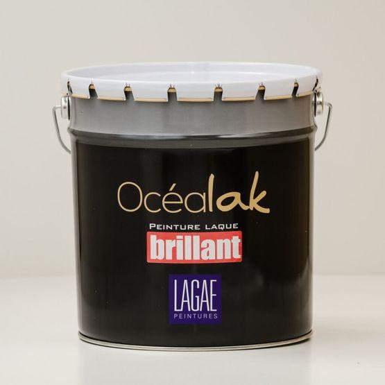 Peinture laque alkyde brillant tendu ocealak brillant - Peinture blanc laque brillant ...