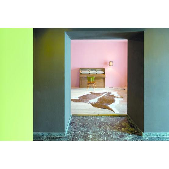 Peinture Minérale Mate En 63 Teintes De La Palette Le Corbusier
