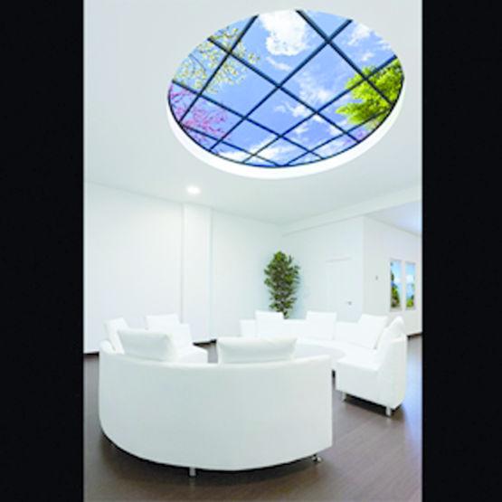 plafond lumineux avec photographie de ciel haute d finition skyceiling la compagnie du ciel. Black Bedroom Furniture Sets. Home Design Ideas