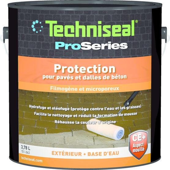 protection aspect mouill pour pav s et dalles. Black Bedroom Furniture Sets. Home Design Ideas