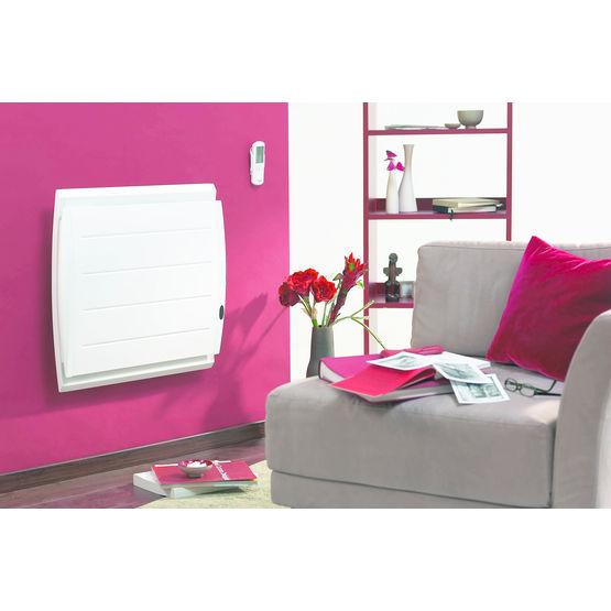 radiateur corps de chauffe en fonte equateur thermor chauffage. Black Bedroom Furniture Sets. Home Design Ideas