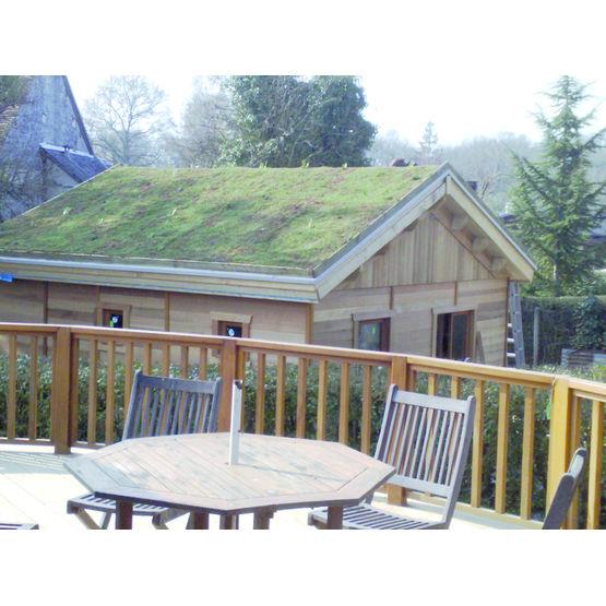 toiture 1 pente incroyable toiture de terrasse en bois placard en sous pente amp porte. Black Bedroom Furniture Sets. Home Design Ideas